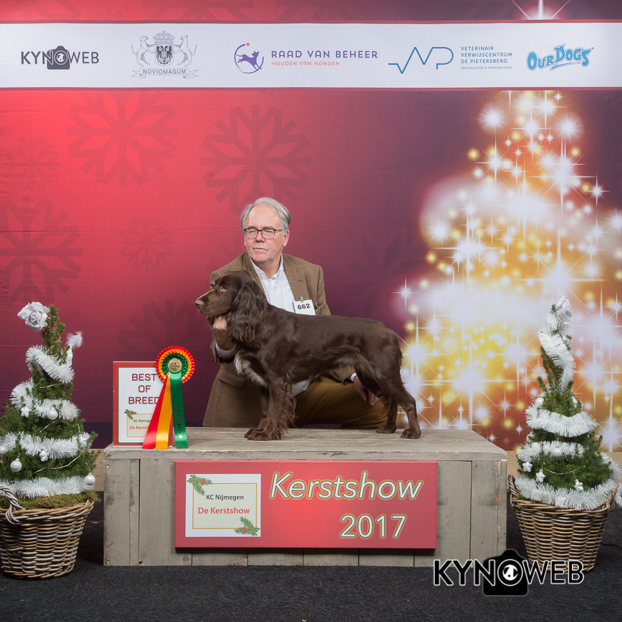 Heather of the Fields Society. Best of Breed op de Kerstshow in Gorinchem